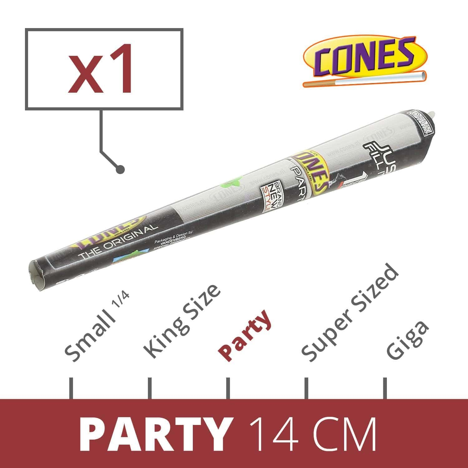 Photo de Cones Party x 1