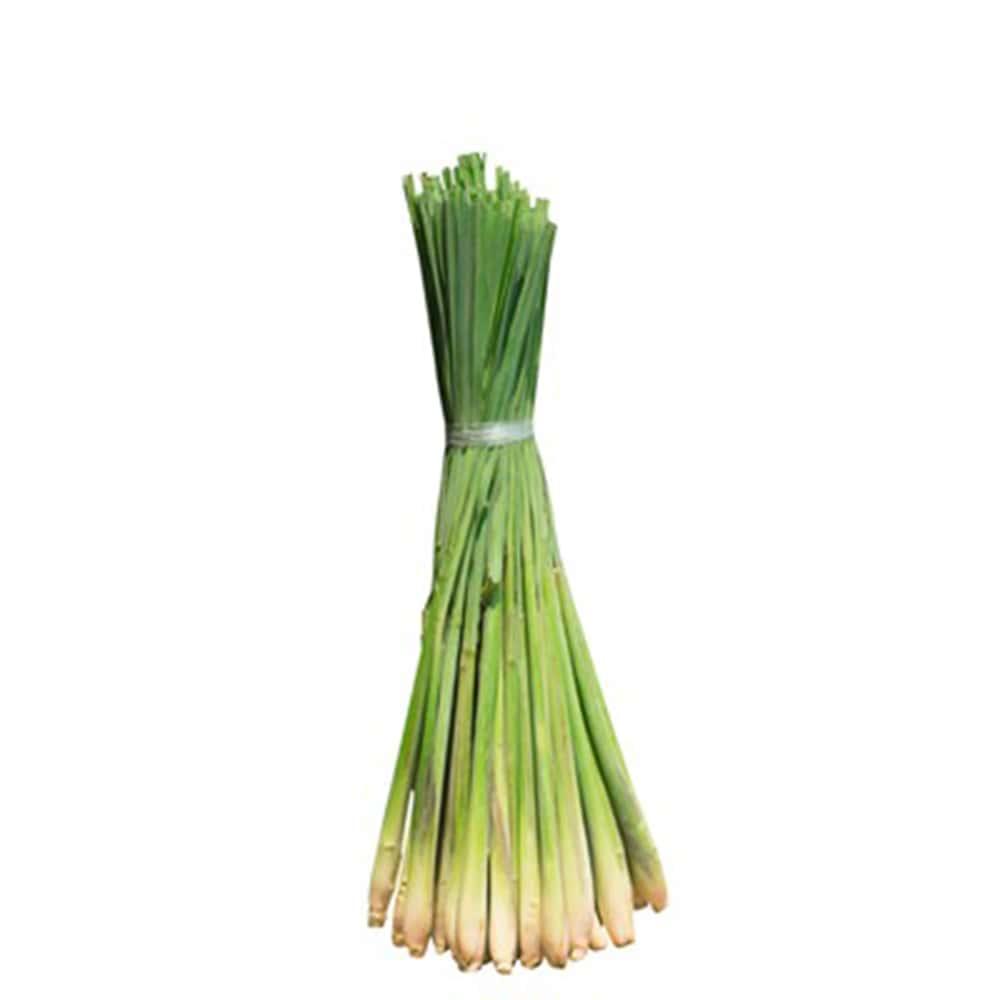 Photo de Citronnelle Bio herbe en sachet