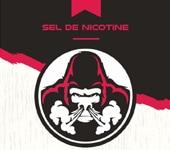 Tout savoir sur le sel de nicotine