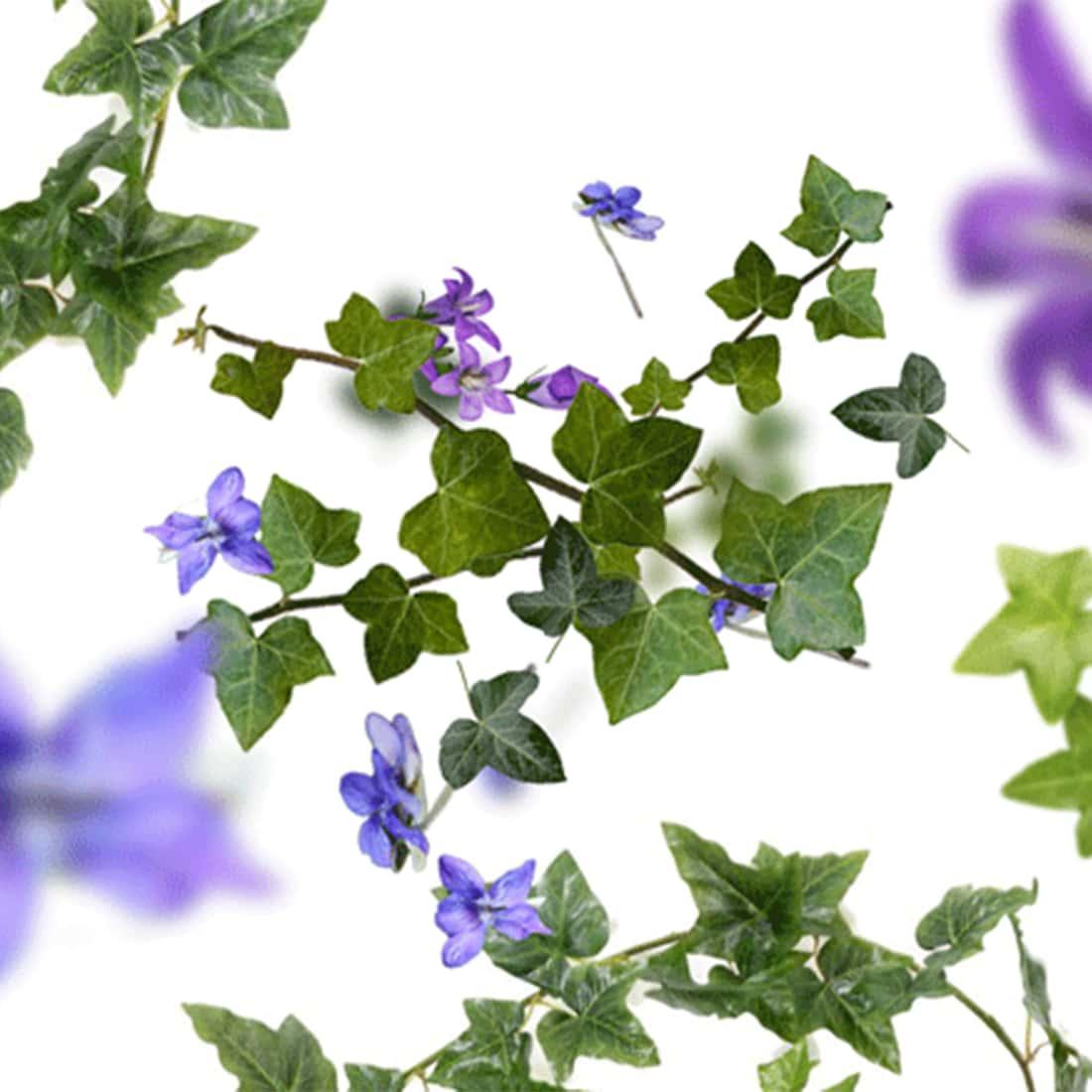 Photo #2 de Bouquet Parfumé Maison Berger Lolita Lempicka Transparent