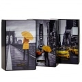Etui paquet cigarette New York City