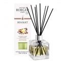 Bouquet Parfumé Maison Berger Poussière d'Ambre
