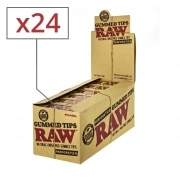 Filtres en Carton Raw Gummed Perforés x 24