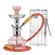 Chicha Mya QT Rose