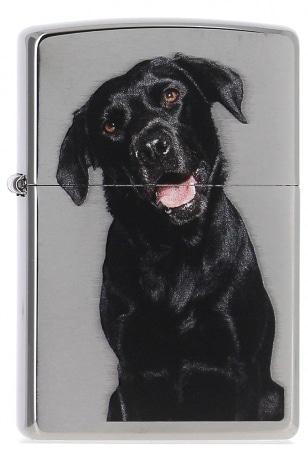 Zippo Labrador Noir