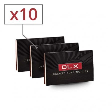 Filtres en carton DLX x10
