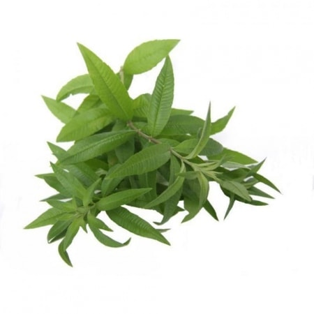 Verveine Bio herbe en sachet