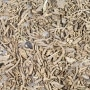Photo #1 de Mousse d'Islande Bio herbe en sachet